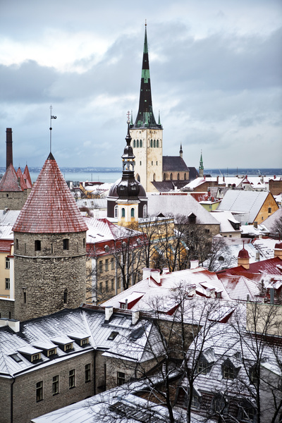 What is e-Residency | How to Start an EU Company Online in Estonia
